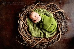 baby in nest photo inspiration - This looks like a grapevine wreath which they've partially undone. - Cute idea.