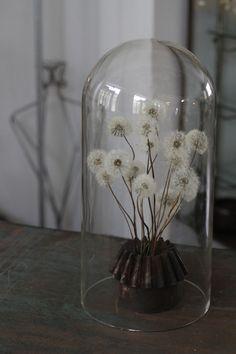 Rustic, Junk style, Junk elegance, flower, dandelion seeds, Shabby Chic, Kyoto Antiques HANAMIZUKI
