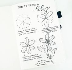 How to draw beautiful flower doodles in your bullet journal! These easy flower drawing tutorials will have you doodling flower patterns all over your bujo. Easy Flower Drawings, Flower Drawing Tutorials, Drawing Tips, Easy Drawings, Drawing Lessons, Drawing Techniques, Bullet Journal Spread, Bullet Journal Layout, Bullet Journal Inspiration