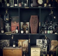 Oddities and apothecary Gothic Interior, Horror Decor, Goth Home, Spooky House, Cabinet Of Curiosities, Gothic House, New Room, Home Decor Inspiration, Decoration
