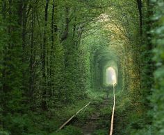 This tunnel is actually still used today — trains chug through it three times a day to deliver wood to a factory. It's believed that if couples who are truly in love hold hands and cross the tunnel, their wishes will come true.