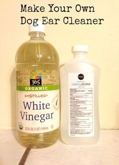 Diy Dog Ear Cleaner - Save Money By Not Needing To Go To The Vet For Ear Infections With 5 Homemade Dog Ear Cleaner Recipes Homemade Dog Ear Cleaner Dogs Ears Infection Cle. Yorkies, Low Carb High Protein, Dogs Ears Infection, Dog Ear Infection Treatment, Diy Stuffed Animals, Pet Health, Dog Care, Dog Grooming, Goldendoodle Grooming