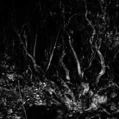 photo various | free download photobank of black and white photos