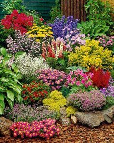 I would love to have the skill to create a garden this diverse and beautiful.