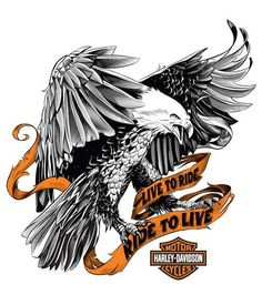 Outstanding Harley davidson bikes images are available on our web pages. Take a look and you wont be sorry you did. Harley Davidson Stickers, Harley Davidson Quotes, Harley Davidson Tattoos, Harley Davidson Parts, Harley Davidson Wallpaper, Harley Davidson Chopper, Harley Davidson Motorcycles, Harley Davison, Harley Tattoos