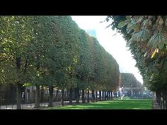 @ Michele Stapleton  A marvelous park you might already know.. I go back every year...  And Joe Dassin is one of my favorite french singer...  Joe Dassin - Le Jardin du Luxembourg