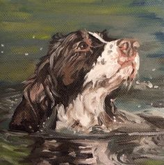 5 x 5 oil on canvas springer spaniel Working Springer Spaniel, Working Spaniel, Springer Dog, English Springer Spaniel, Raining Cats And Dogs, Watercolor Animals, Wildlife Art, Dog Portraits, Animal Paintings