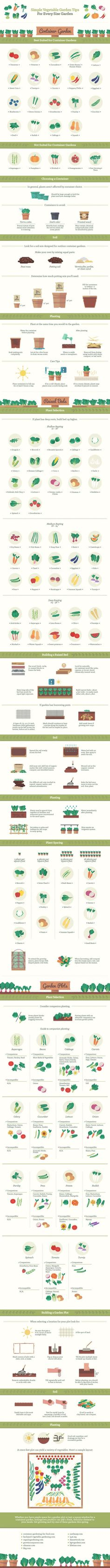 Suitable food plants for all types of gardens. From mentalfloss.com