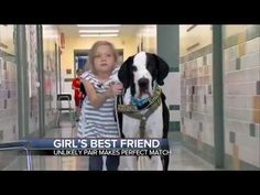 I Teared Up – When I Saw How This Girl Got Help From This Dog - http://www.dogisto.com/i-teared-up-when-i-saw-how-this-girl-got-help-from-this-dog/