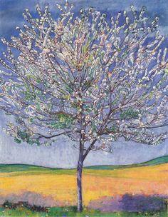 Cherry Tree in Bloom (1905), Ferdinand Hodler