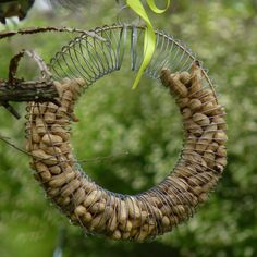 DIY Slinky Bird Feeder for Peanuts. Such a fun idea! birdsandblooms.com