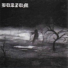Burzum - Burzum/Aske.  I'm not as gushy over Burzum as some people, but I'll admit I like this album and, gasp, Filosofem.  Varg did help shape the sound and look of black metal.  Of course, Varg turned out to be nothing more than a murderous Norwegian redneck.