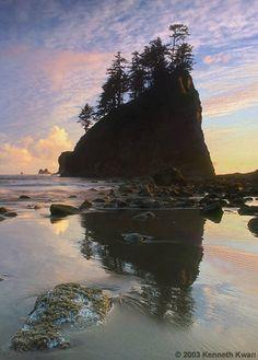 La Push Beach, Washington the single most mesmerizing place on earth!
