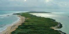 Isla Contoy, una área protegida sustentable en Quintana Roo | México Desconocido