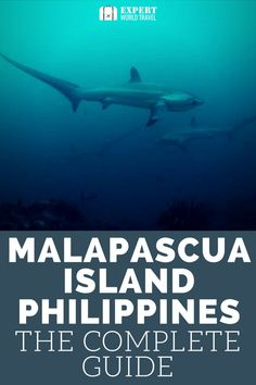 Malapascua Island in the Philippines is a stunning location for a beach holiday, snorkelling, diving and more