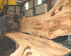 Maple has been a favorite for American craftsman since Colonial days. Look at this beautiful wood grain! Wood Turning Lathe, Wood Magazine, American Craftsman, Picture On Wood, Wood Species, Wood Grain, Natural Beauty, Woodworking, Nature