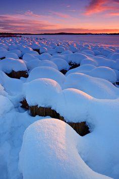 Snow Sunset, Kiruna, Sweden photo via laura Beautiful World, Beautiful Places, Beautiful Pictures, Vida Natural, I Love Snow, Lappland, Winter Beauty, Winter Scenes, Wonders Of The World
