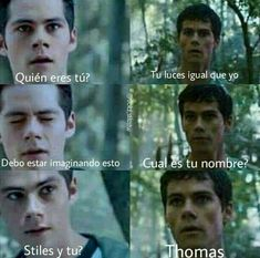 Read Memes from the story Fotos newtmas 5 by (Nora Wolf 🐺) with 391 reads. Dylan O'brien Maze Runner, Maze Runner Funny, Maze Runner The Scorch, Maze Runner Thomas, Maze Runner Series, Teen Wolf Memes, Scott Y Stiles, Maze Runner Cura Mortal, Dilan O Brien
