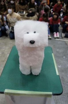"""Digital dog--yes, this is a dog. Apparently it's a new doggie hairstyle, the """"cubed canine cut."""" Looks like it's from Japan or somewhere."""