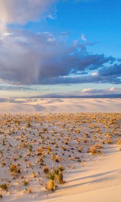 White Sands National Park . New Mexico