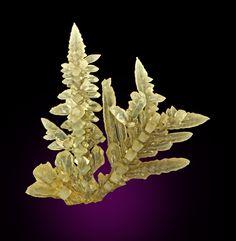 Salammoniac, NH4Cl, Ravat Village, Yagnob River, Zeravshan Range, Viloyati Sogd, Tajikistan. Dimensions: 3.7 x 3.4 x 0.4 cm. A fine dendritic branching crystallized grouping of colorless terminated salammoniac crystals. Copyright: © Weinrich Minerals, Inc.