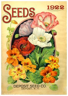 New Ideas For Vintage Flowers Illustration Image Seed Catalogs Vintage Diy, Vintage Ephemera, Decoupage Vintage, Vintage Labels, Garden Catalogs, Seed Catalogs, Vintage Poster, Vintage Prints, Seed Art