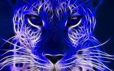 blue electric - Cats & Animals Background
