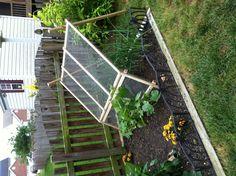 Our little garden 2013. Trellis we built for cucumbers.