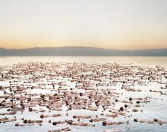 A thousand models stripped naked for artist Spencer Tunick to create the latest in his series of mass nudes, this time in Israel. The artwork was made to raise awareness of receding water levels in the Dead Sea
