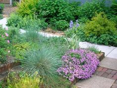 Xeriscape Gardening: Growing Plants with Less Water. Handyman Magazine