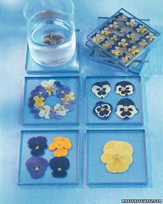 Hand Made Gift Ideas For Mothers Day including this one pansy coasters
