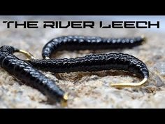 Best Fly Fishing tips. Best Fly Fishing tips. Fly Fishing Tips, Crappie Fishing, Fishing Tackle, Fishing Lures, Fishing Tricks, Fishing Stuff, Fishing Rods, Ice Fishing, Fly Casting