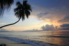 the sublime...         North Coast Madang.