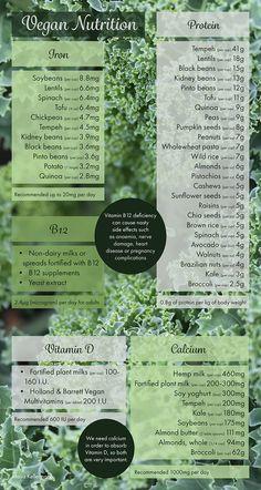 Vegan nutrition 2