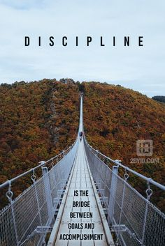You must have discipline.