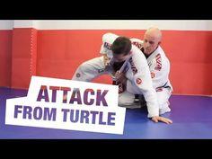 Attack From the Turtle Position: Video Lesson with Professor Robert Hill   Gracie Barra - Brazilian Jiu-Jitsu - Martial Arts - Jiu-Jitsu for everyone - Master Carlos Gracie Jr.