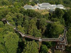 Kew Gardens treetop walkway
