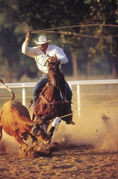 1546 Best Cowboys And Cowgirls Images Cowboy Cowgirl