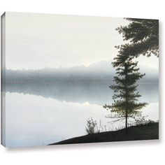 ArtWall Ken Kirsch Morning Fog Wrapped Canvas, Size: 36 x 48, Green