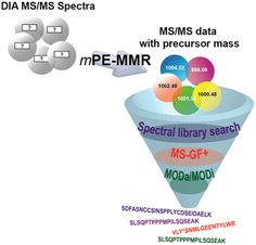 [ASAP] Accurate Precursor Mass Assignment Improves Peptide Identification in Data-Independent Acquisition Mass Spectrometry