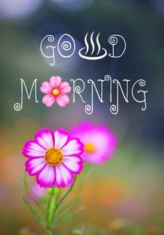 Lovely Good Morning Images, Good Morning Flowers, Good Morning Photos, Good Morning Love, Good Morning Messages, Good Morning Greetings, Good Morning Wishes, Good Day Quotes, Good Morning Inspirational Quotes