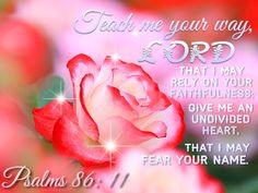 ❤️Bible Verses ~ Psalm 86:11