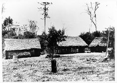 Australian South Sea Islander huts, Burdekin district