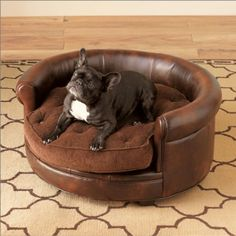Wellington Dog Bed::From Gumps. Dog Home Decor, Pet Accessories, Van Gogh, Dog Bowls, Your Pet, French Bulldog, Beds, Animals, Doggies