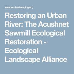 Restoring an Urban River: The Acushnet Sawmill Ecological Restoration - Ecological Landscape Alliance