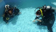 Try dive Diving, Free, Scuba Diving
