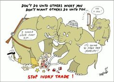 Stop ivory trade!