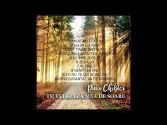 Puiu Chibici - Tu esti raza mea de soare (Album Demo) - YouTube Album, Youtube, Books, Libros, Book, Book Illustrations, Youtubers, Youtube Movies, Card Book