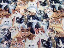 Gobelin Stoff mit Katzen Teddy Bear, Etsy, Animals, Goblin, Fabrics, Animales, Animaux, Teddy Bears, Animal