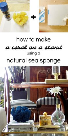 how-to-make-a-coral-on-a-stand-using-a-natural-sea-sponge